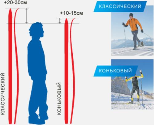 как правильно выбрать лыжи по росту сосудов шеи